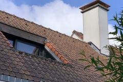 Vogelpinnen dak